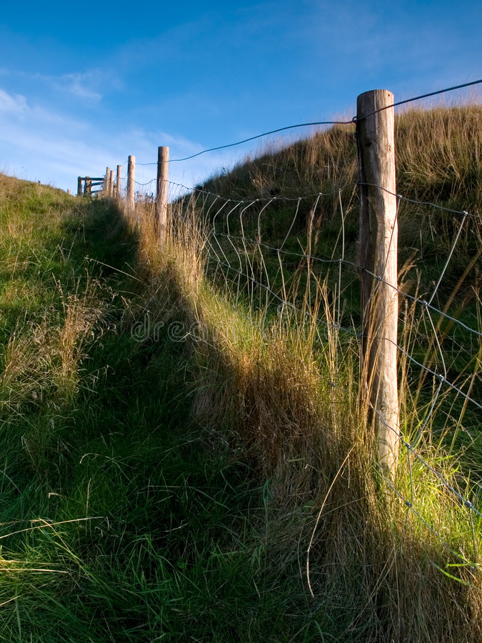 Fence Line royalty free stock photos