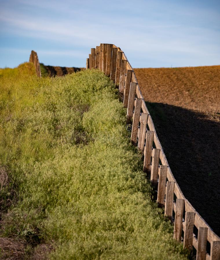 Fence line through the field. In the summer stock photos