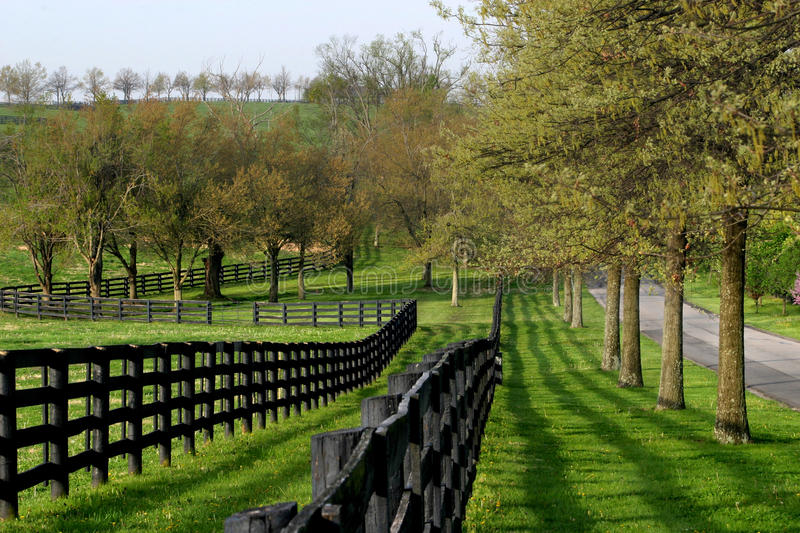 Fence Line and Lane stock photography