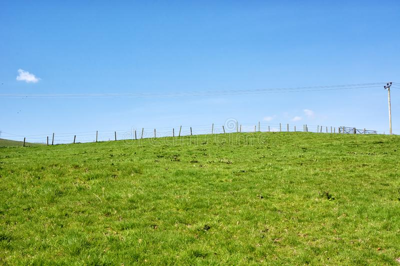 Fence-lined green field under the beautiful blue sky in Scotland, UK.  royalty free stock photo