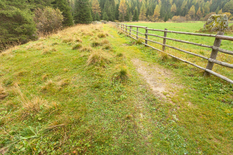 Fence long a path in an mountain meadow royalty free stock photography