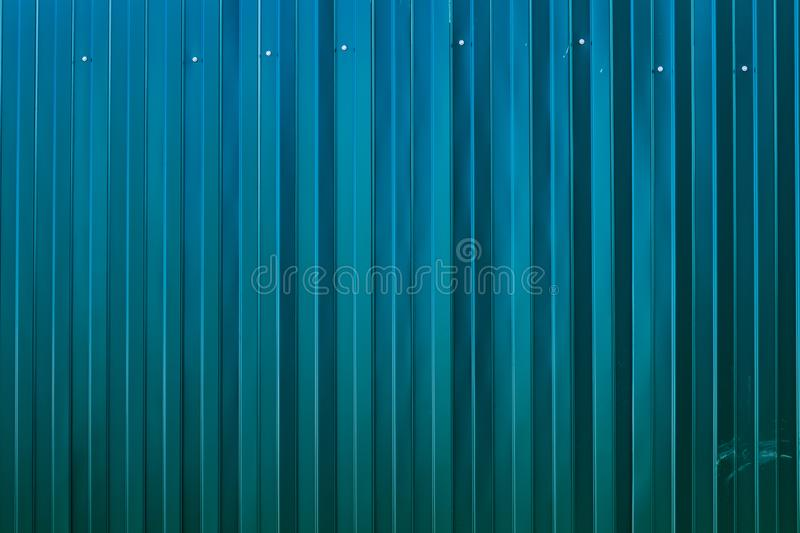 The fence is made of metal profile with screws. Iron fence. New metal fence. Texture or background. The background is a royalty free stock photos