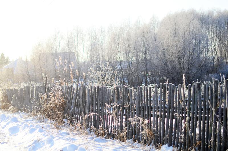 A fence made of wooden twigs royalty free stock photos