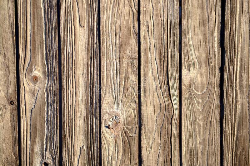 Fence palings textured background royalty free stock image
