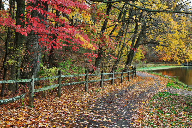 Download Fence And Path In Autumn stock image. Image of beauty - 23759955