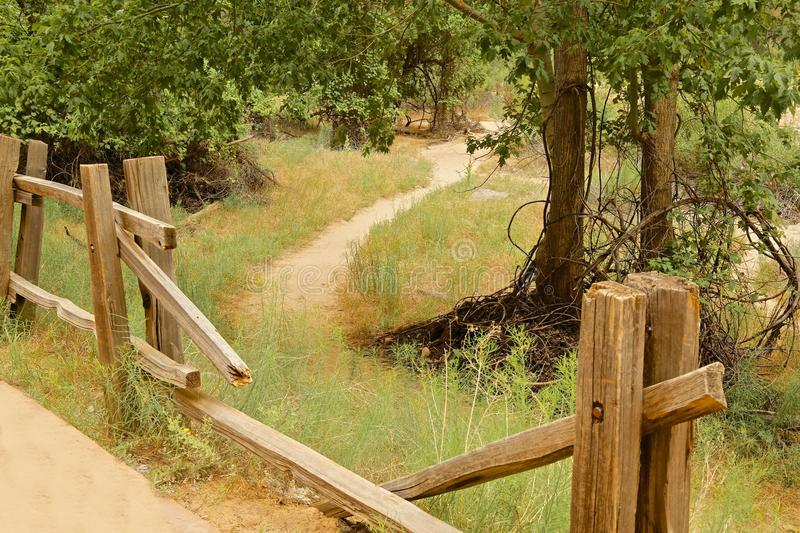 Fence path. Broken fence makes for a shortcut to the path through the woods in Zion National Park royalty free stock photography