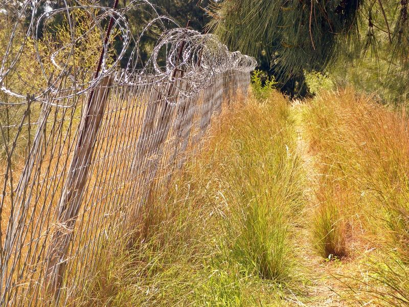 Fence and path royalty free stock photography