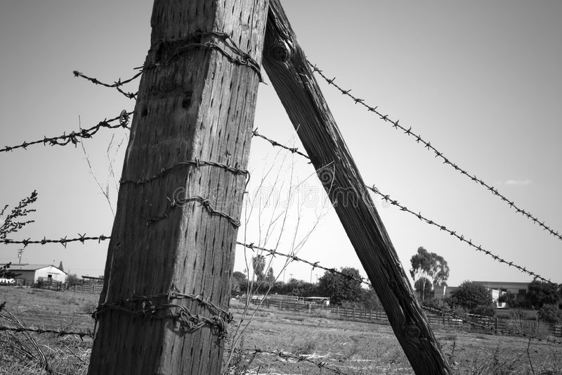 Download Fence Post stock photo. Image of barb, rural, barbs, field - 8146