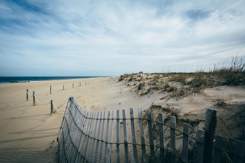 Fence and sand dunes at Cape Henlopen State Park in Rehoboth Beach, Delaware. stock photos