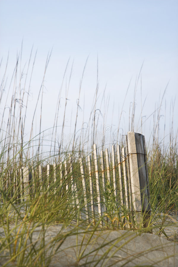 Fence on sandy dune royalty free stock photography