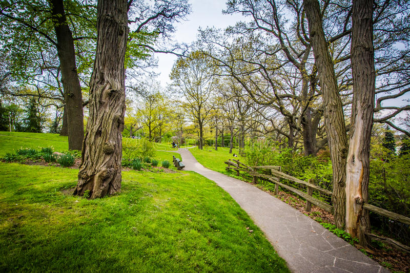 Fence and trees along a walkway at High Park, in Toronto, Ontario. stock images