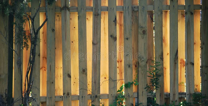 Fence - wooden