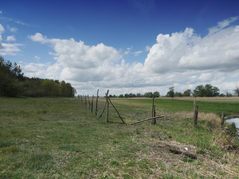 Fenced empty pasture royalty free stock image
