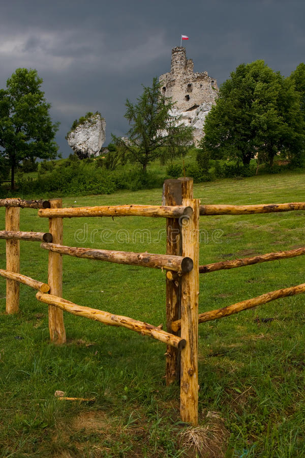 Fenced meadow and castle ruins