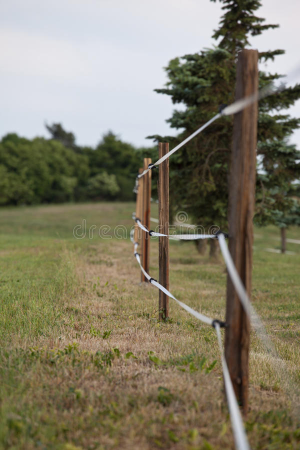 Free Fenced Pasture Stock Image - 26591041