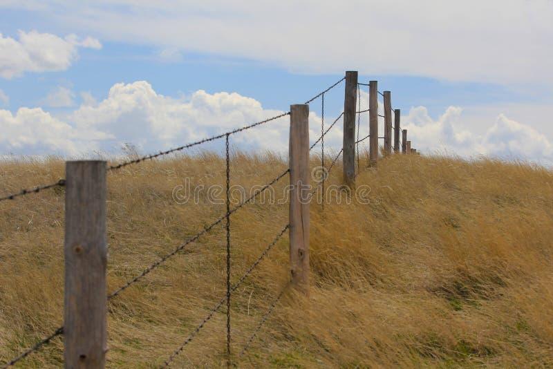 Fenceline dans une prairie photos libres de droits