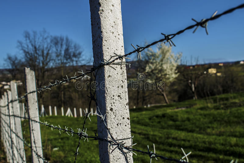 fences obrazy stock