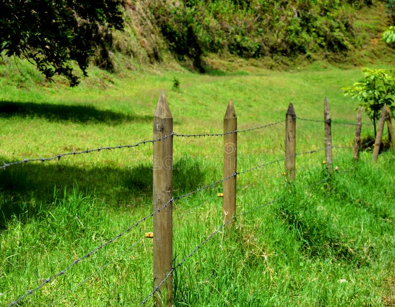 Fences of a Garden. Fences of a farm in the ground royalty free stock photo