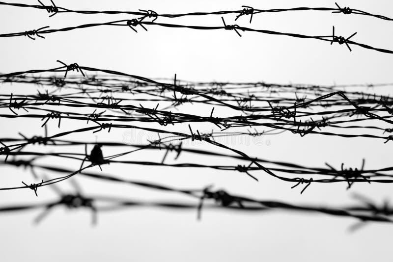 fencing Cerca con alambre de púas dejado cárcel Espinas bloque Un preso Campo de concentración del holocausto presos imágenes de archivo libres de regalías