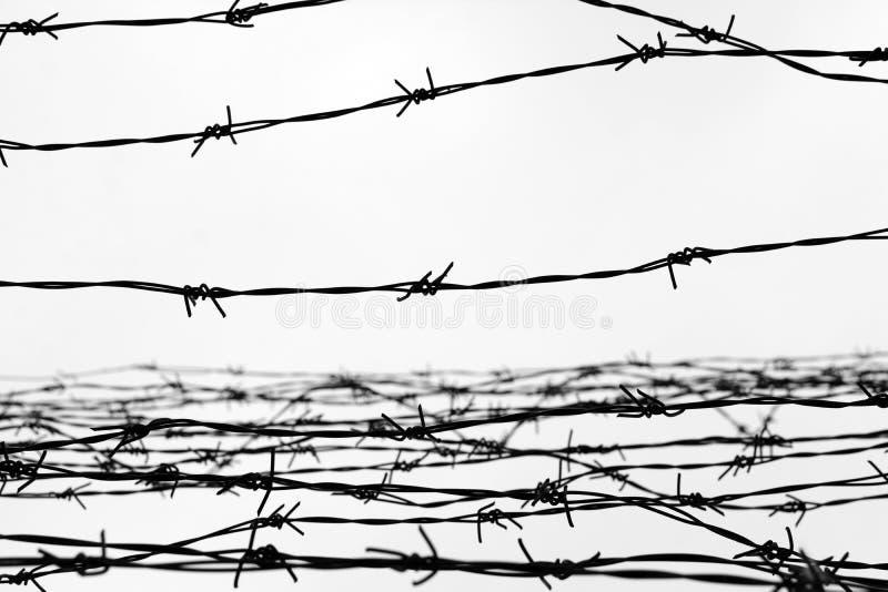 fencing Cerca con alambre de púas dejado cárcel Espinas bloque Un preso Campo de concentración del holocausto presos imagen de archivo libre de regalías