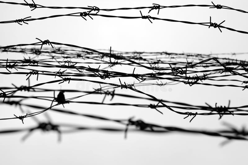 Fencing fence with barbed wire let jail thorns block