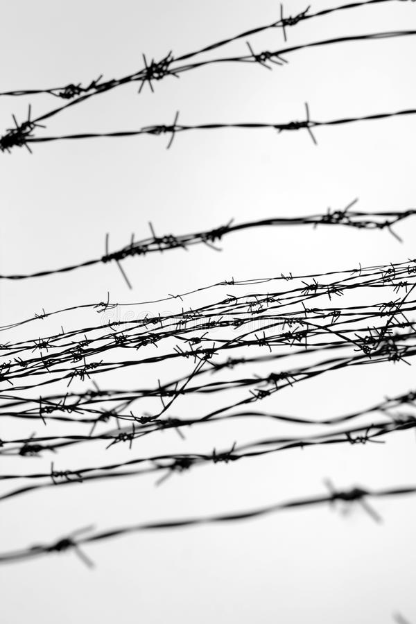 Fencing. Fence With Barbed Wire. Let. Jail. Thorns. Block. A ...