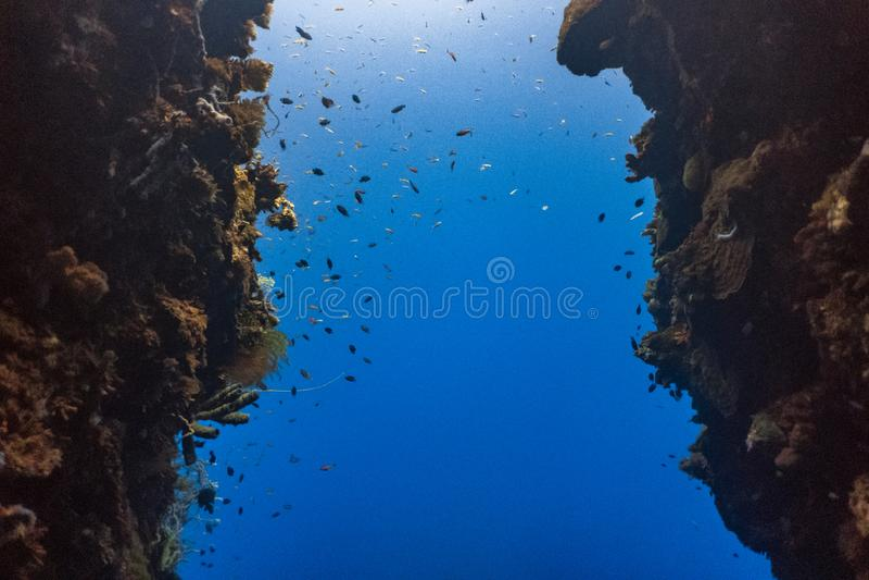 Fenda subaquática estreita fotos de stock royalty free