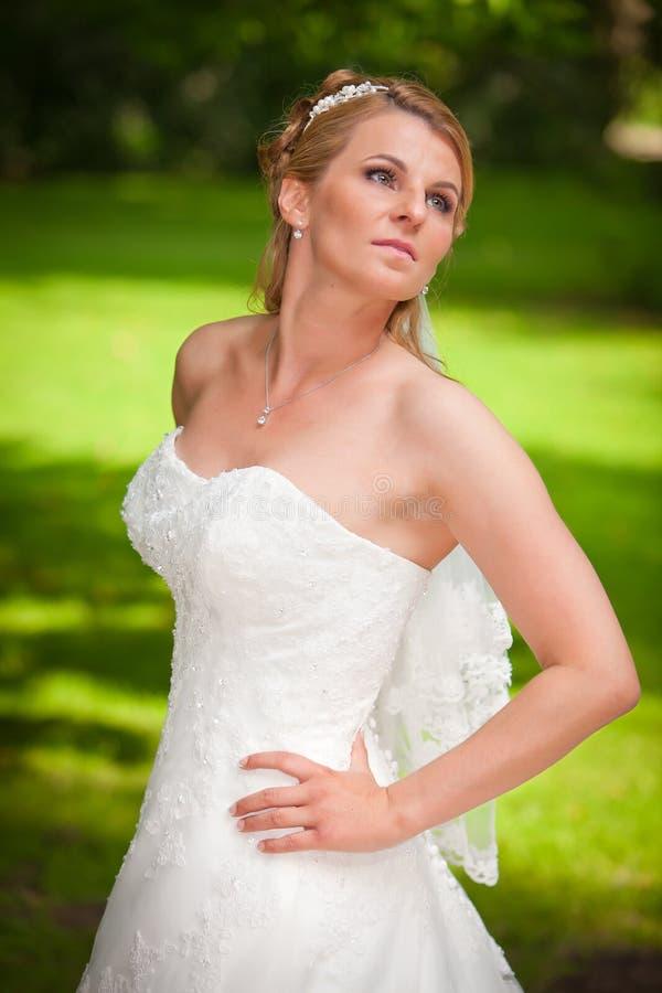 Fendage gentil de mariée Busty photographie stock libre de droits