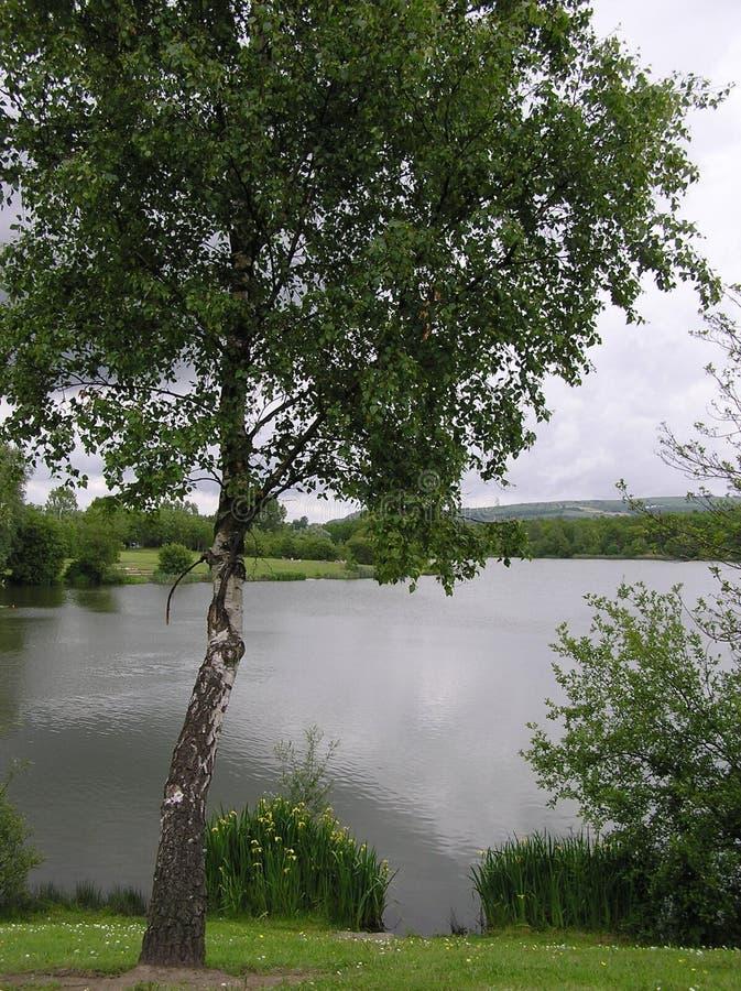 Fendrod湖视图 免版税图库摄影