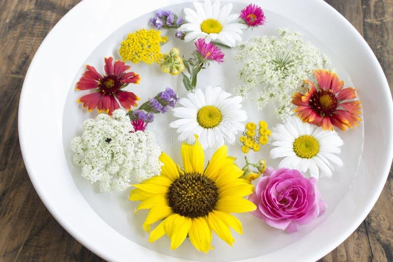 Feng Shui, fleurs dans une cuvette avec de l'eau images libres de droits