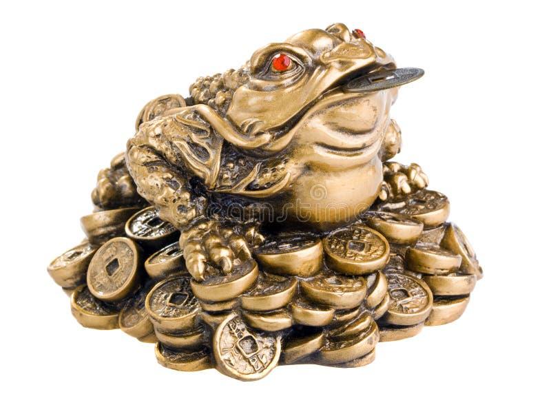Download Feng Shui Frog stock image. Image of shui, money, shiny - 13131921