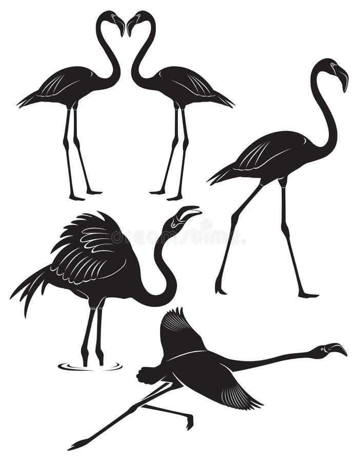 Fenicottero royalty illustrazione gratis