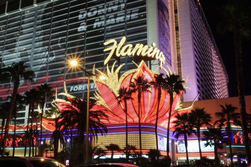 Fenicottero del casinò, Las Vegas immagini stock libere da diritti