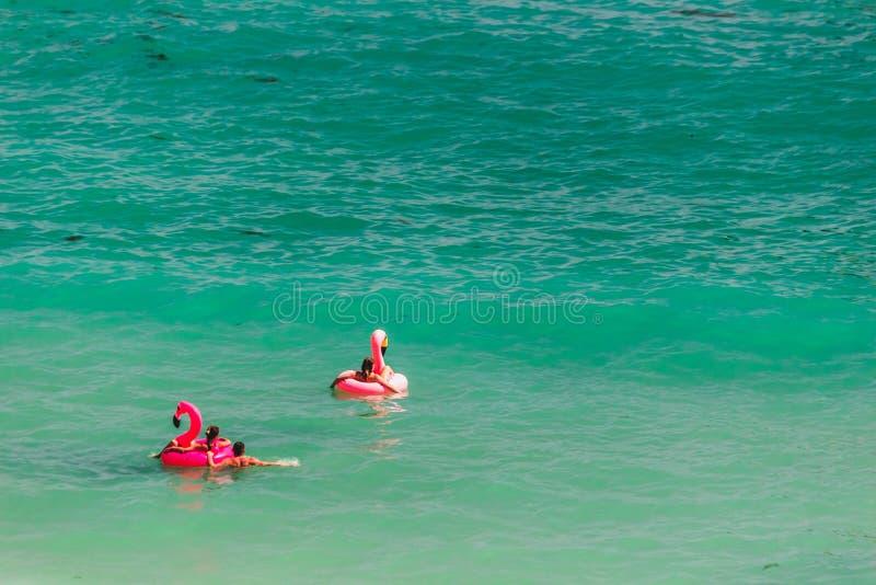 Fenicottero gigante di rosa gonfiabile alla D Ana Beach, Lagos, Portogallo immagine stock libera da diritti