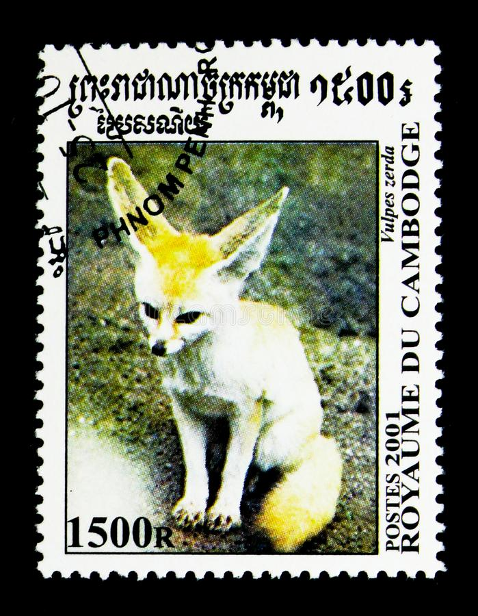 Fennek Fennecus zerda, Canine from all over the World serie, circa 2001. MOSCOW, RUSSIA - NOVEMBER 24, 2017: A stamp printed in Cambodia shows Fennek Fennecus stock photo
