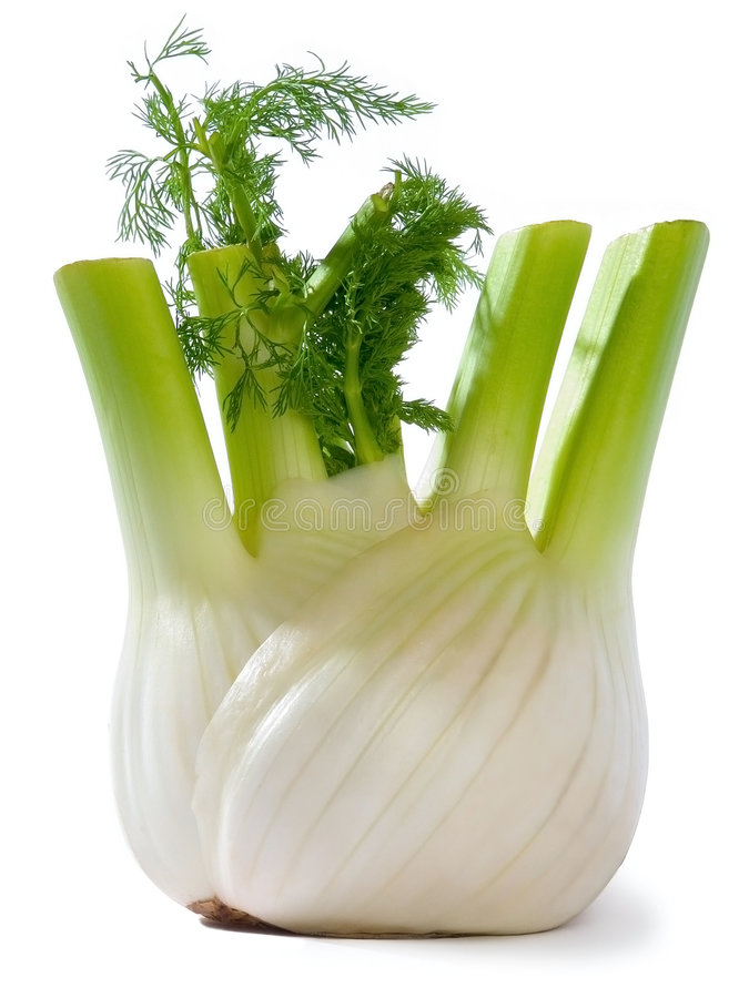 Download Fennel stock photo. Image of fresh, natural, closeup, green - 2009882