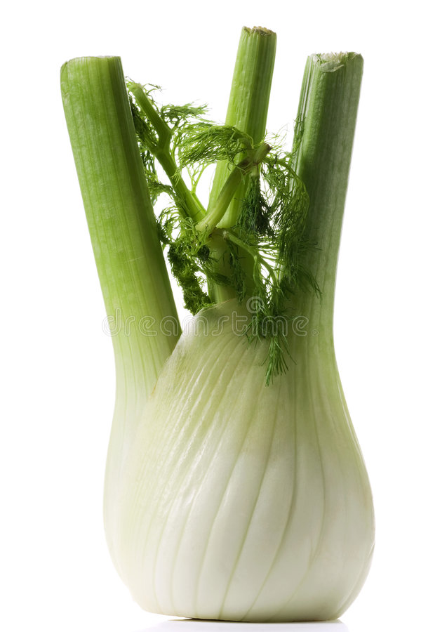 Download Fennel stock image. Image of aromatic, vegetable, veggie - 7956379
