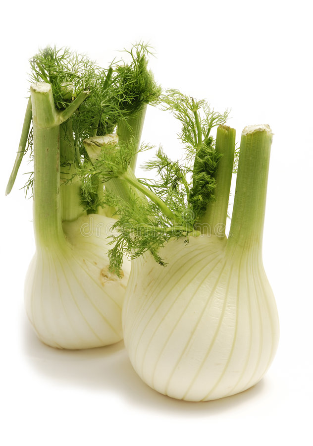 Free Fennel Stock Photos - 8192203