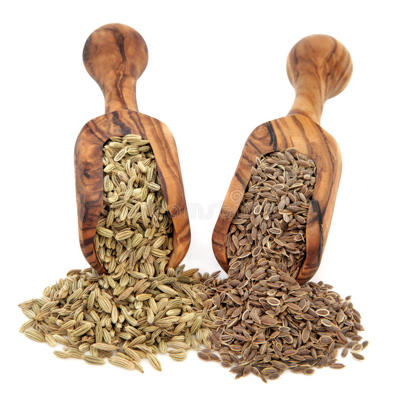 Fennel And Dill Seed Royalty Free Stock Image