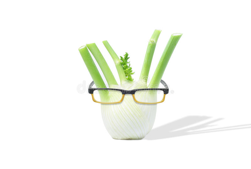 Fennel with Glasses stock image