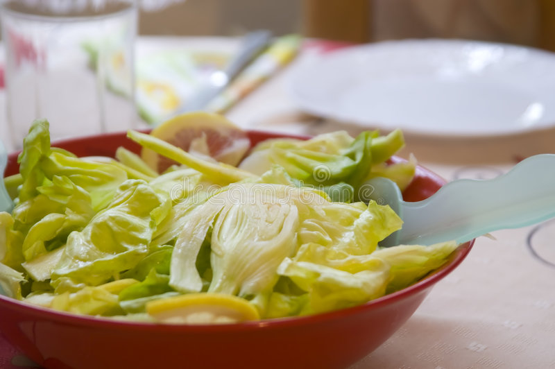 Fennel salad with lemon. Fennel salad in the red bowl royalty free stock photo