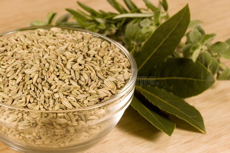 Download Fennel Seeds Royalty Free Stock Photos - Image: 13094588