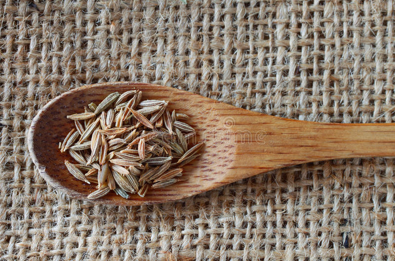 Fennel seeds. Over rustic background royalty free stock image