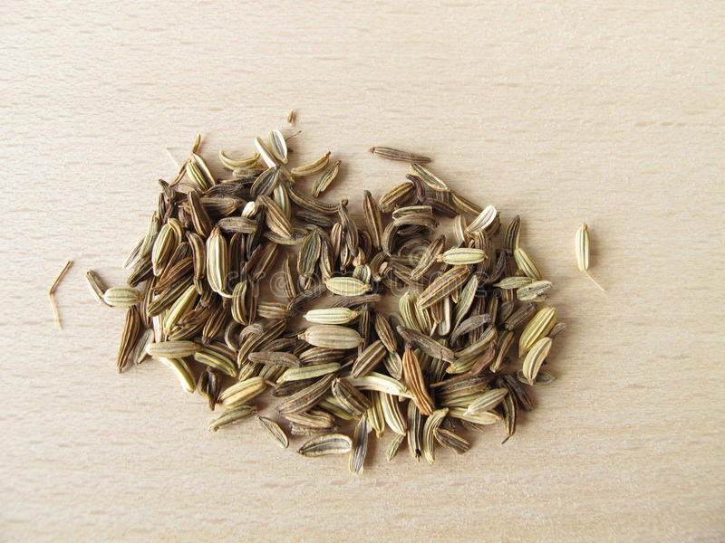 Fennel seeds, Foeniculi fructus royalty free stock image