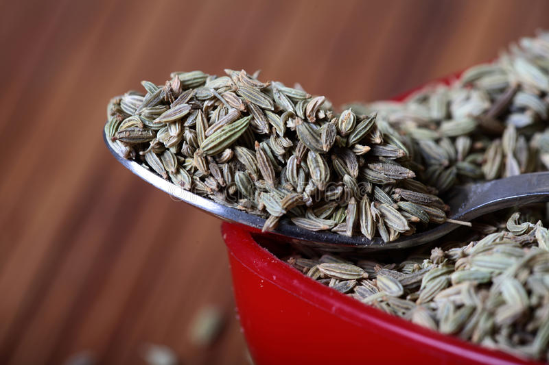 Download Fennel seeds macro stock image. Image of colored, tastey - 17905255