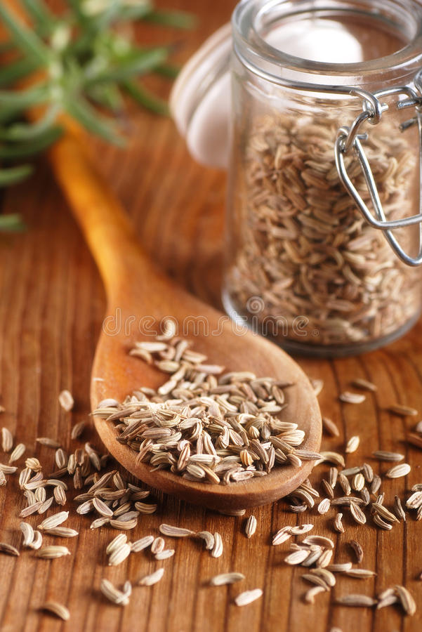 Fennel seeds in the spoon stock photography