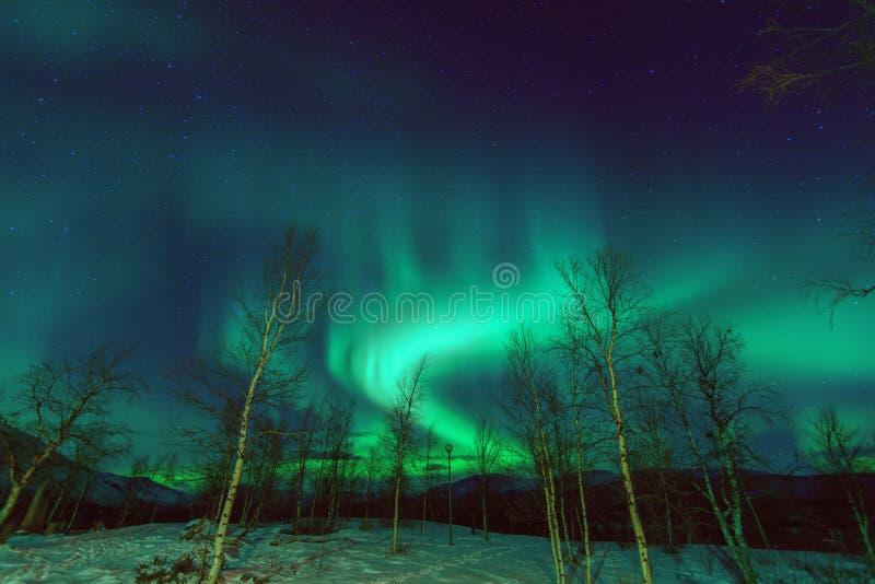 Fenomen Aurora Borealis för nordliga ljus royaltyfri bild