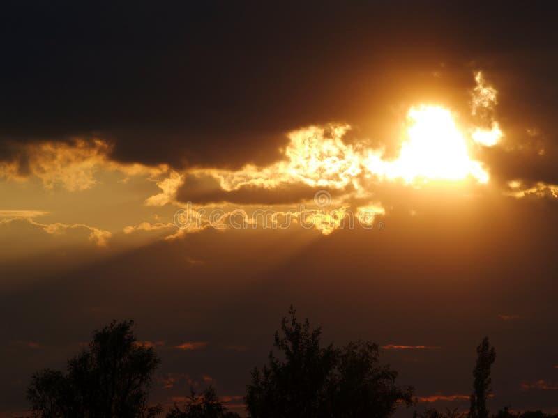 Fenomenal solnedgång royaltyfri bild