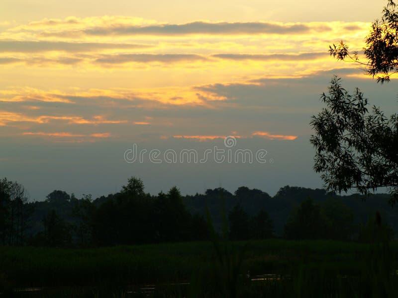 Fenomenal solnedgång royaltyfria foton