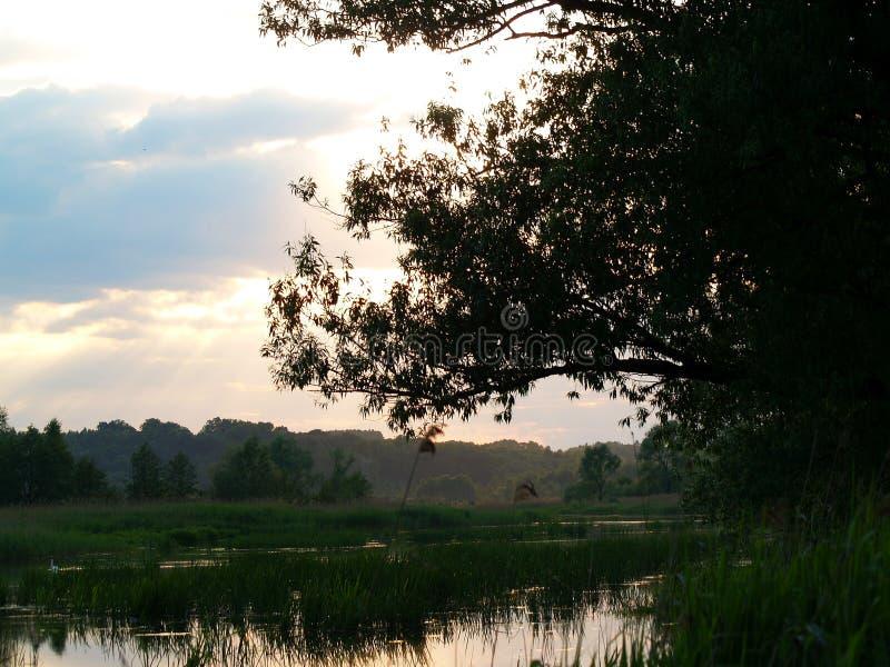 Fenomenale zonsondergang stock foto